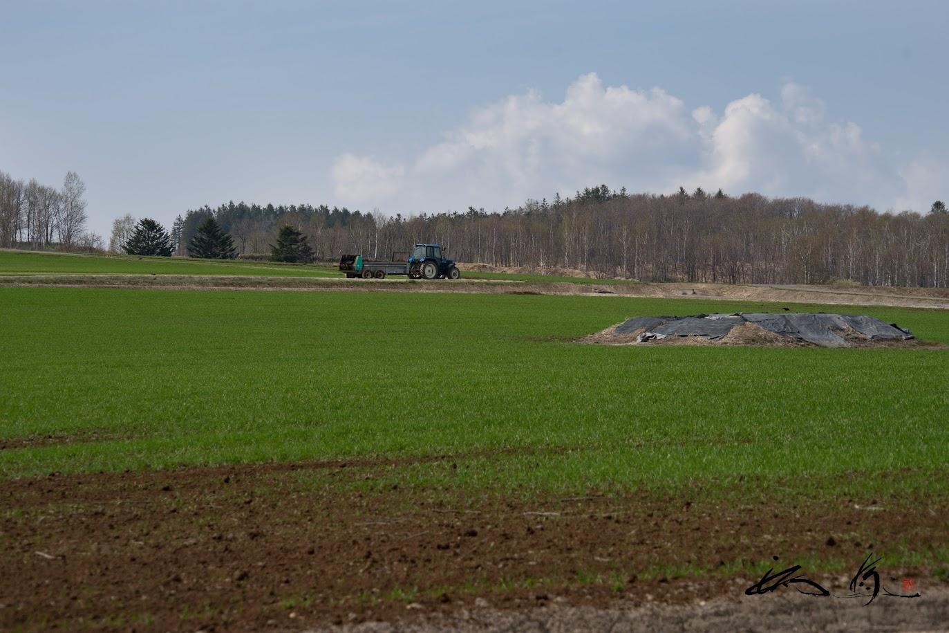 ひまわりの里の肥料散布
