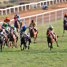 horse racers by Venkat Krish - Sports & Fitness Other Sports ( #horserace, #chennai, #horse, #sports, #racers )