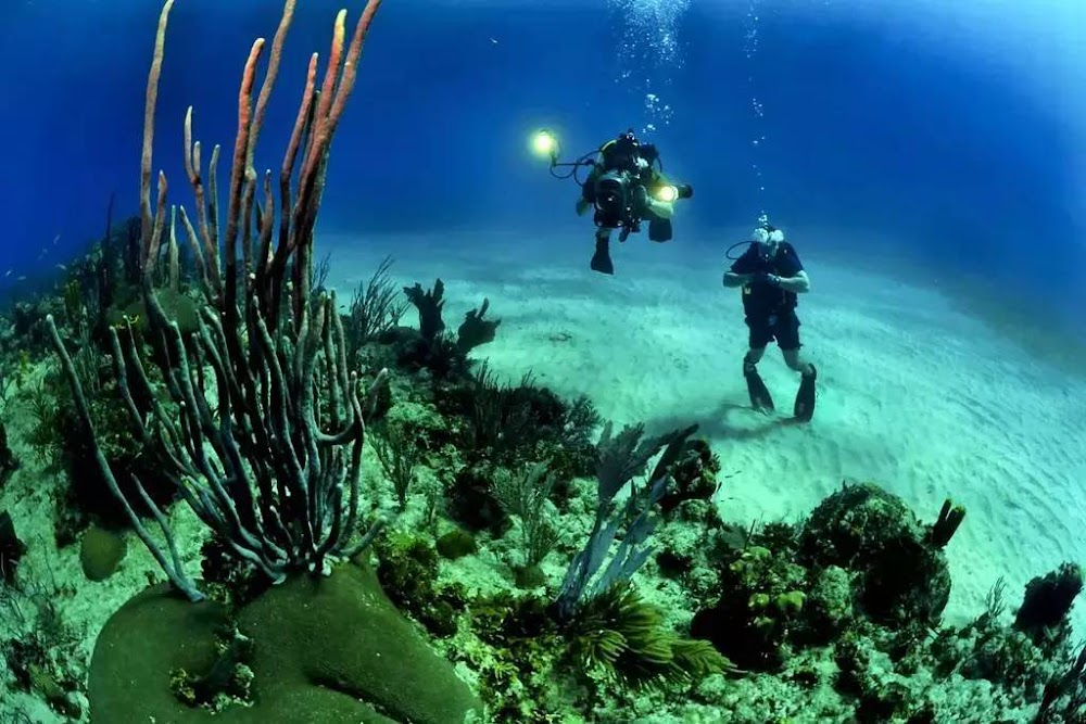 15-extreme-sports-destination-india-Scuba Diving-Andaman-and-Nicobar-Islands-image