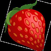 Berry Handbook: Description, Usage, Photo, Offline