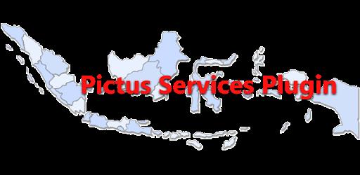 Pictus SIM-T Service Plugins for PC