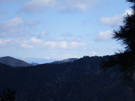 左に富士山