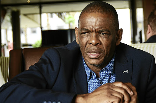 Strife: Free State ANC chairman Ace Magashule will not lead the provincial delegation to the party's elective conference if a group of ANC members succeed in their high court bid. Picture: SUPPLIED