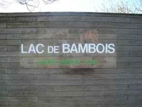 Photo: Lac de Bambois