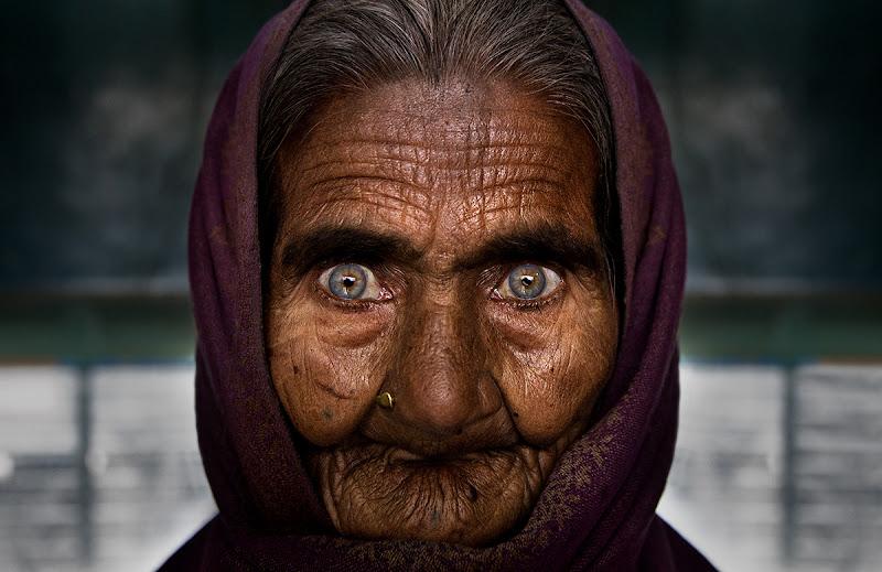 Occhi di Ghiaccio di alessandrobergamini