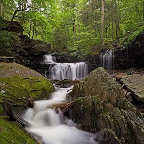 Portrait of R. B. Ricketts Falls by Tim Devine - Landscapes Waterscapes ( falls trail, stream, luzerne county, waterfalls, rb ricketts, kitchen creek, waterfall, glen leigh, r. b. ricketts, moss, endless mountains, pennsylvania, ricketts glen, r b ricketts, falls, summer, appalachian mountains, ricketts glen state park )