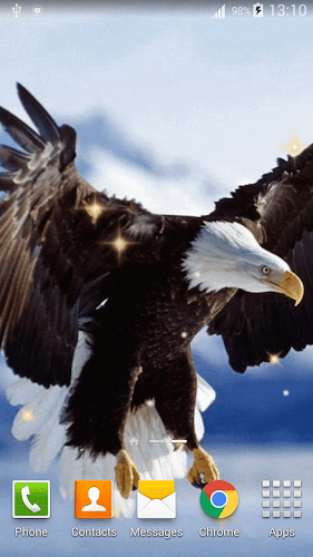Eagle Live Wallpaper HD Android App Screenshot