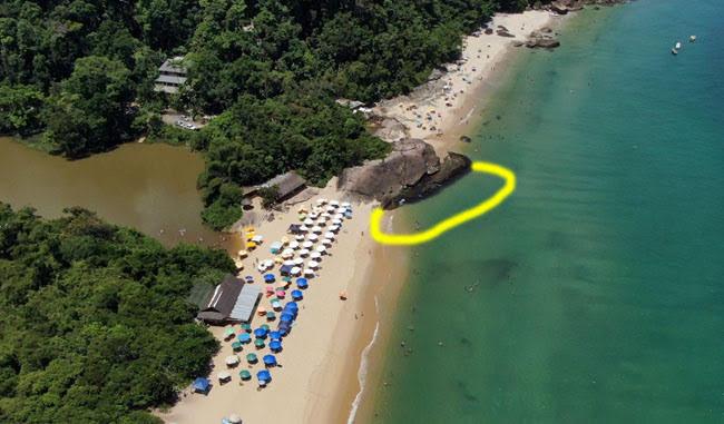 Praia-do-Prumirim-mergulho-com-tartarugas
