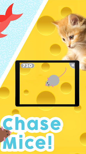 Games for Cats! - Cat Fishing Mouse Chase Cat Game 1.0.8 screenshots 2