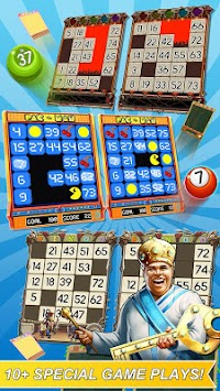 Bingo Adventure apk screenshot