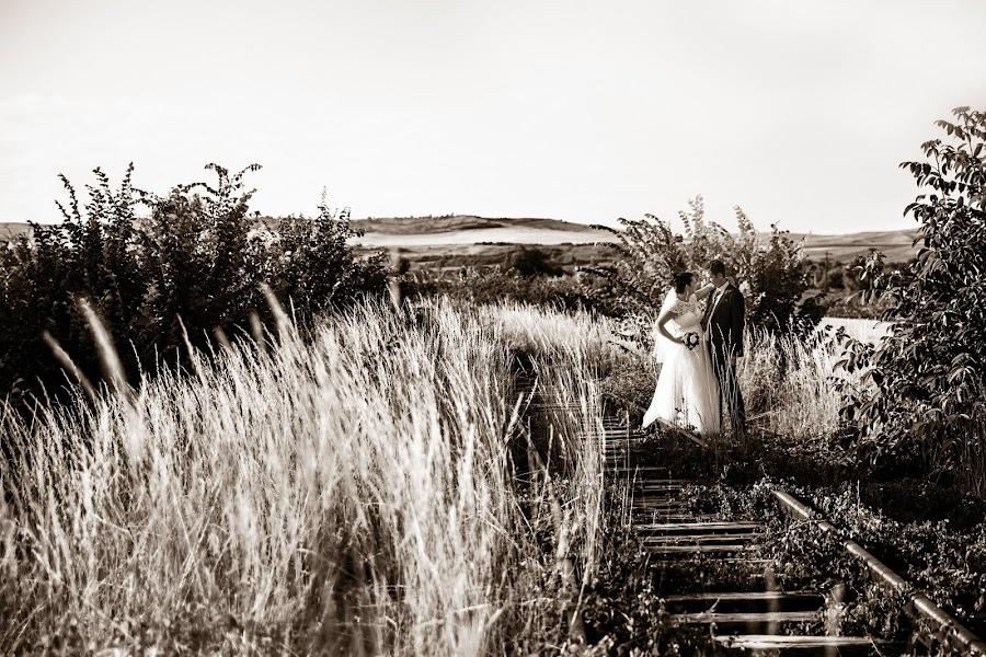 Fotograful de nuntă Alida BOARI (boari). Fotografia din 16.07.2014