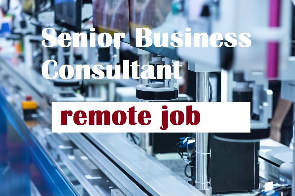 Senior Business Consultant( Remote Position)