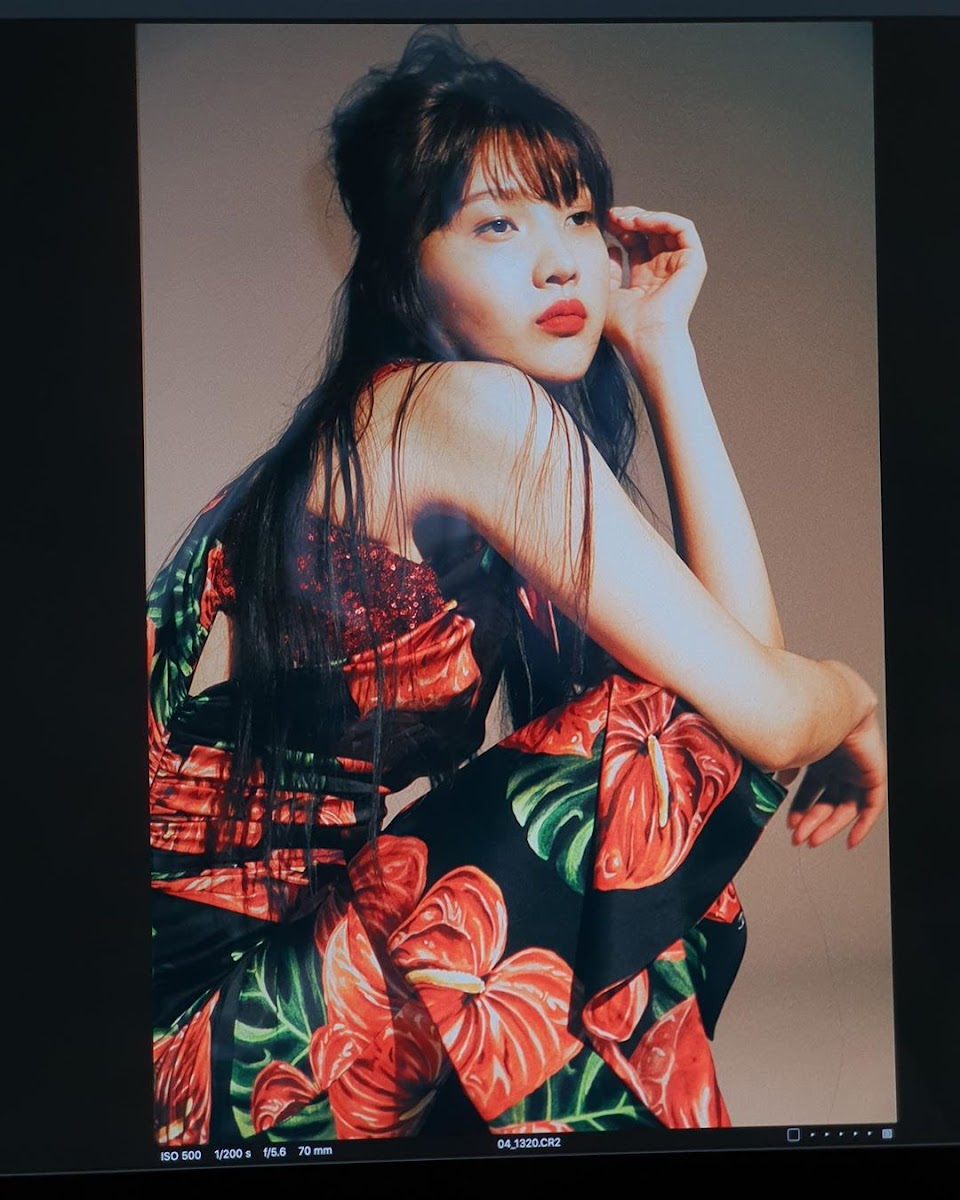 red velvet joy red rose 2