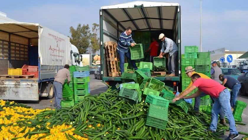 Destrucción de hortalizas como acto de protesta.