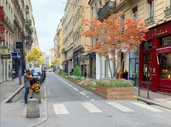 locaux professionels à Lyon 2ème (69)