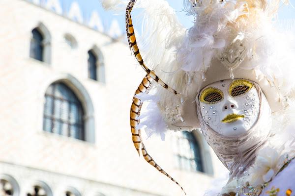 Carnevale a Venezia di g.paciphoto