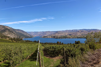 Photo: Stop 1 - Navarre Coulee - Terminal Moraine & Lake Chelan Overlook