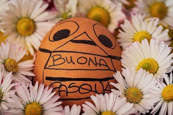 Buona Pasqua di #giannigalliphoto