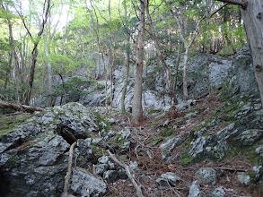 大きな岩が多く見られる