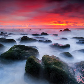 Misty colorful Nights by Paulo Penicheiro - Landscapes Sunsets & Sunrises ( canon, 7d, sigma, sunset, sea, low light, 10mm, seascape, rocks )