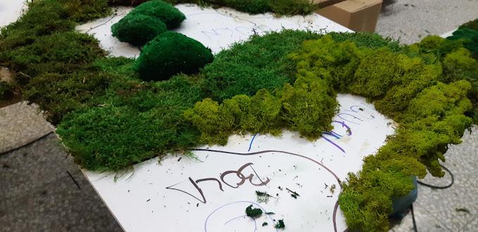 Proceso de montaje del jardín vertical de planta conservada