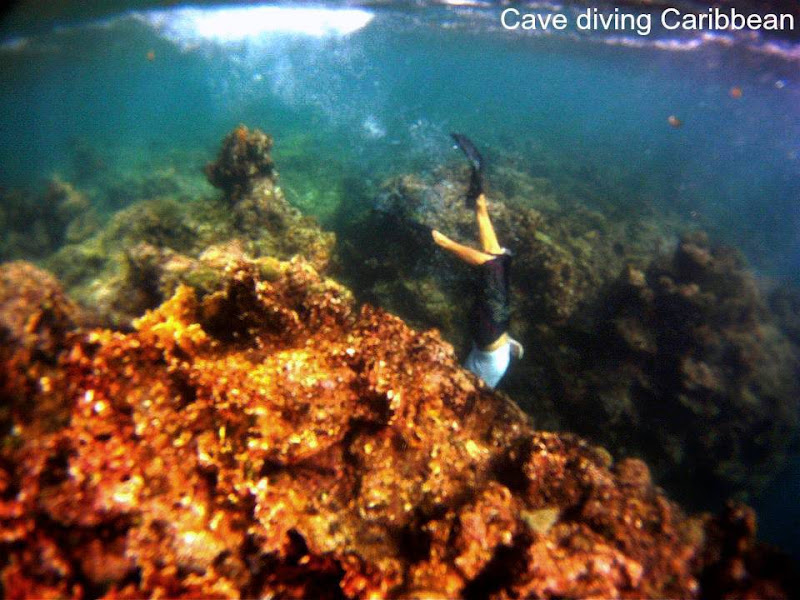 Freediving | Spearfishing