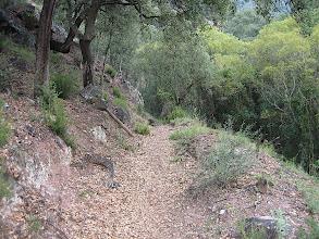 Photo: JPL. El Espadán
