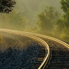 Golden Lines by Greg Croasdill - Transportation Railway Tracks ( rails, train, sunrise,  )