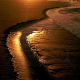 Golden Sand by Liz Hahn - Nature Up Close Sand (  )