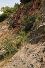 Photo: A kőfejtés kis üregeket is feltárt a jól karsztosodó mészkőben, amelyek azonban nem minősülnek barlangnak