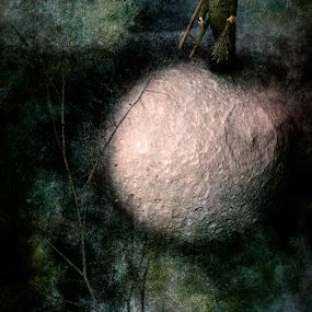 Sweeping the Moon by Tina Bell Vance - Illustration Sci Fi & Fantasy ( fantasy, digital collage, moon, tree, little boy, digital art, digital painting, old photo, landscape )