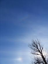 Photo: панорама 8: малое гало, верхняя касательная малого, верхняя касательная большого, паргелий