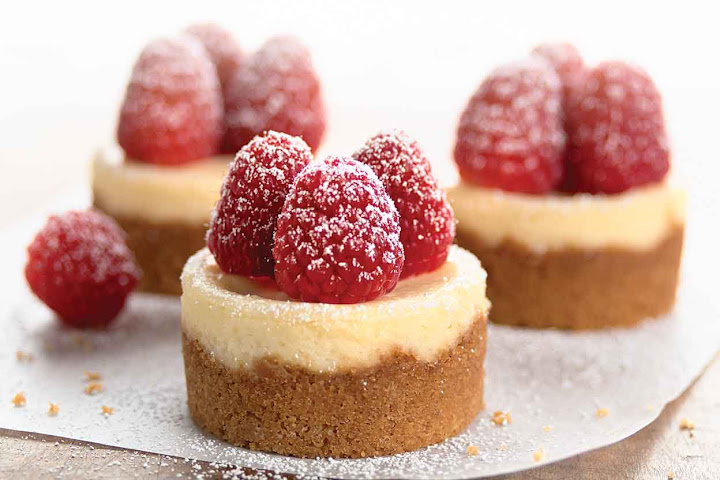mini cheesecakes for sale