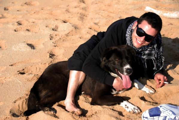 Dog in the beach... di maurettos