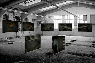 """Photo: Fotoprojekt """"close_up"""" © Franz Immoos, Amsterdam 2014  """"Close up """" Fotoprojekt: Großraumfotos in Fabrikhalle Bei dem Fotoprojekt """"Close up """"werden Großraumfotos in Fabrikhallen installiert. Die Anbringung von Fotos in den Raum erzeugt eine neue räumliche Situation. Diese künstliche Zusammenstellung kombiniert Raum und Aussage des Fotobildes. Der Bildinhalt des Fotobildes wird mit der neuen Situation in Verbindung gebracht. Es ergibt sich ein Dialog mit dem Raum, dem Exponat und dem Betrachter. Letzerer interpretiert durch seine Wahrnehmung und Assoziationen die zeitlichen und räumlichen arrangierten Bildinformationen zu neuen Bildinhalten."""