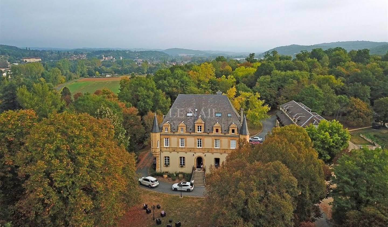 Castle Montignac