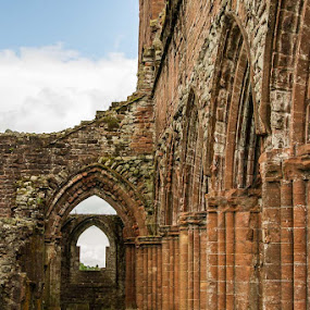 Sweetheart Abbey by Al Goold - Buildings & Architecture Statues & Monuments