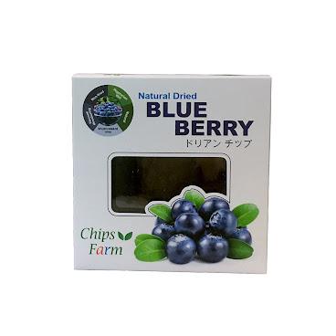 美國野生藍莓