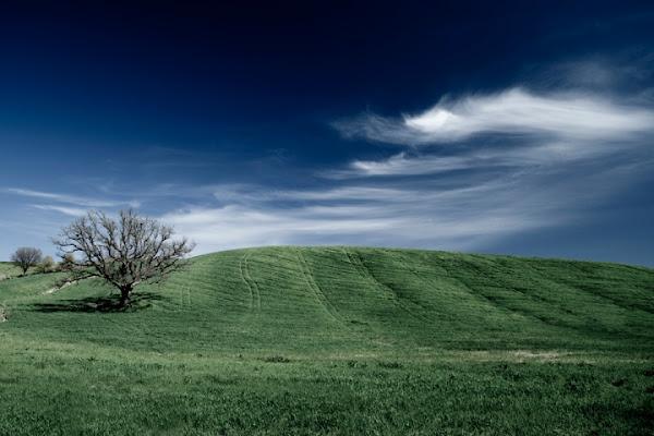La collina dei pensieri di Mirko Macari Fotografia