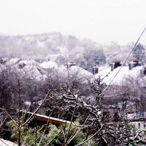 Ballintemple Winter by Che Dean - Landscapes Weather ( winter, cork, ireland, snow, ballintemple, landscape )