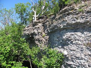 Photo: Limestone cliffs on Estonian west coast