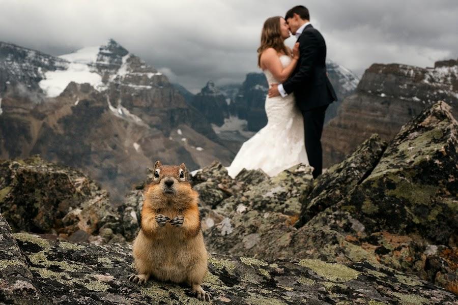 Wedding photographer Marcin Karpowicz (bdfkphotography). Photo of 11.09.2018