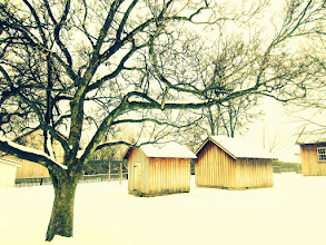 Photo: Cool photo of wooden sheds in the snow under a tree at Carriage Hill Metropark in Dayton, Ohio.