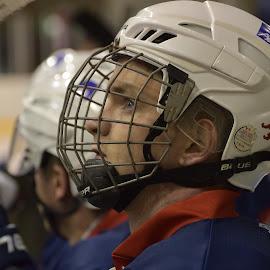 by Marco Bertamé - Sports & Fitness Ice hockey ( helmet, profile, portrait, player )