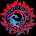 Смоленский звездопад icon