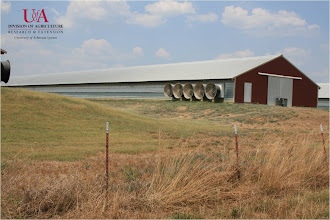 Photo: View of poultry house (7-21-11)