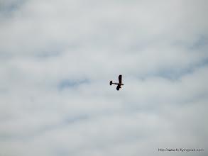 Photo: Wingの形がかわいいな