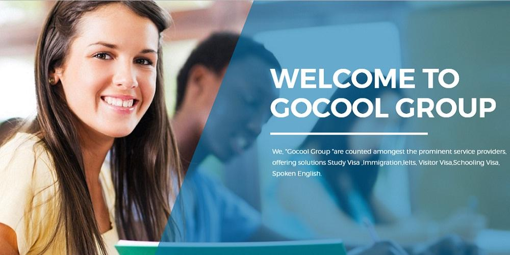 Gocool International Group- screenshot