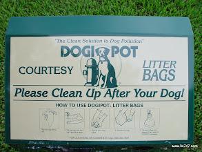 Photo: Dogi Pot, East Village, Celebration, FL
