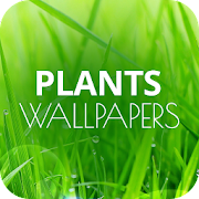 Wallpapers with plants